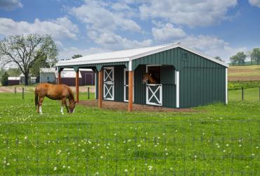 12x30 Horse Barn w 10ft hinged Lean to