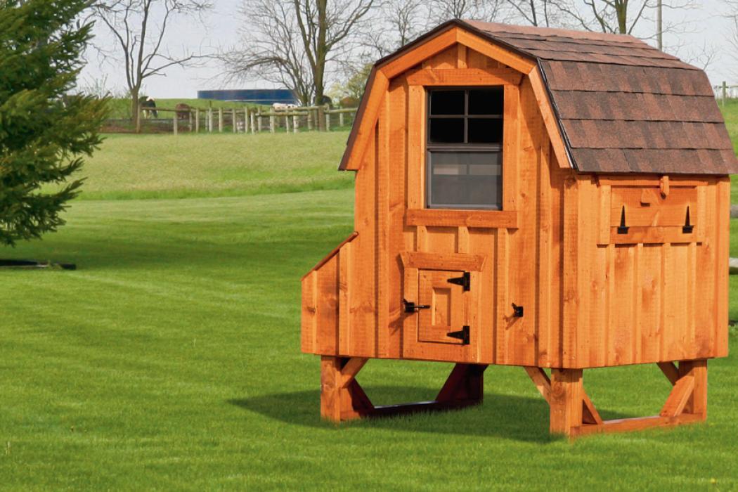 4 X4 Dutch Chicken Coop D44 Lancaster County Barns